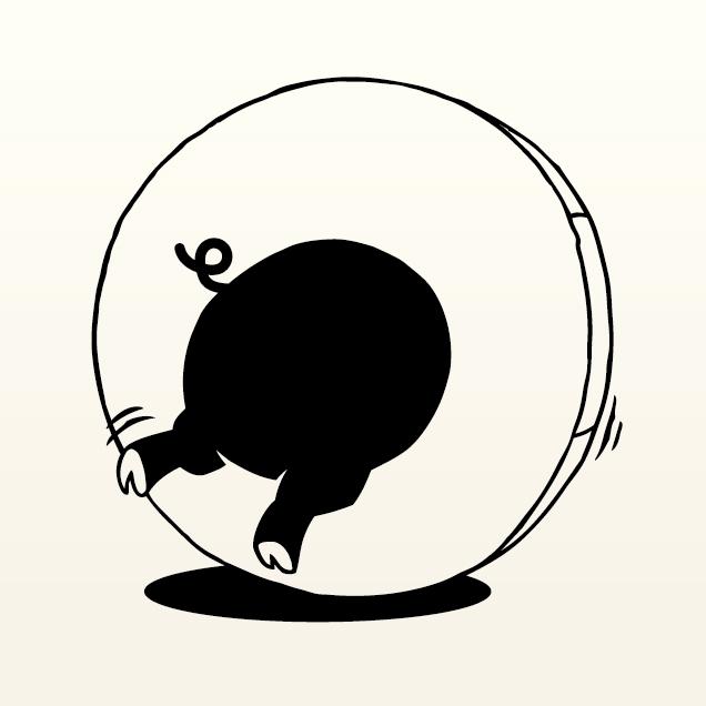 島豚(しまぶた)大人